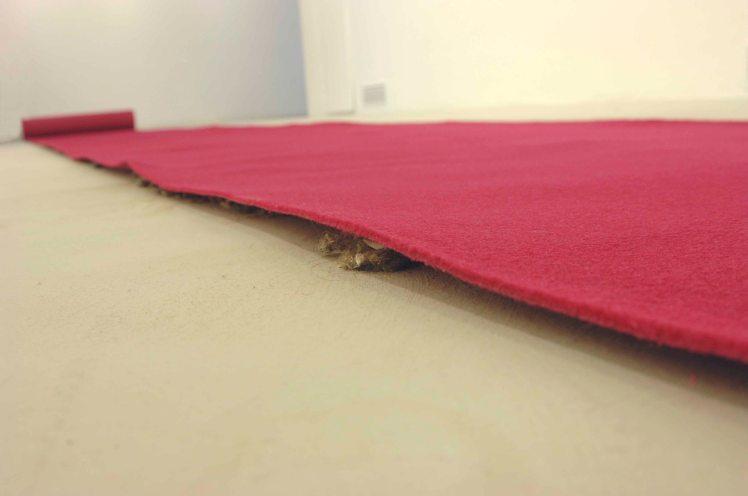 S-T(alfombra roja)