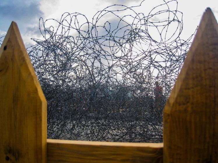 Jardín. Víctor Piverno. 25 kms de alambre de púa enrollado (1)
